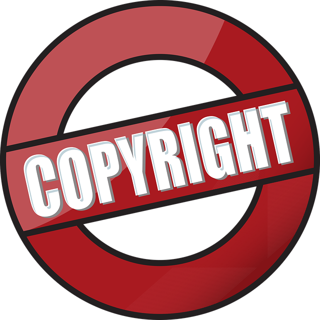 авторские права на компьютерную программу